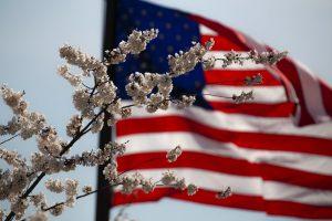US Fiancée Visa in Thailand